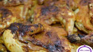 الدجاج التركي